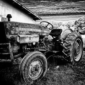Ford Tractor by Allie Small - Artistic Objects Antiques ( allie, ford, tractor, small, photography )