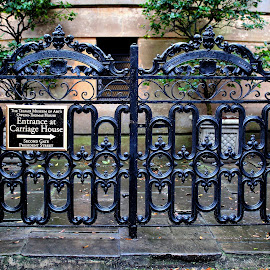 Gate by Tina Stevens - Buildings & Architecture Architectural Detail ( detail, brick, 19th century, art, georgia, molded, architecture, usa, historic, iron, gate, history, savannah, english revival, telfair museum and academy of arts and sciences, trees, nineteenth century, antique, classic, design, filigree, pavement, sidewalk, pillars,  )