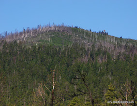 Photo: Summit of Black Butte (1.5-million-yr-old cinder cone), showing where the most recent fire started. Black Butte Burn.
