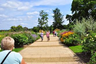 Photo: AGM borders RHS gardens Wisley