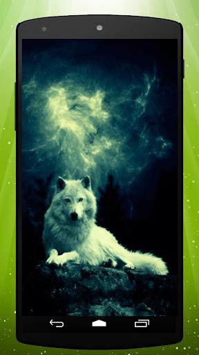 Storm Wolf Live Wallpaper