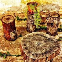 Photo: The five stumps reloaded! #intercer #stump #romania #country #rural - via Instagram, http://instagr.am/p/L4uXmFJfhe/