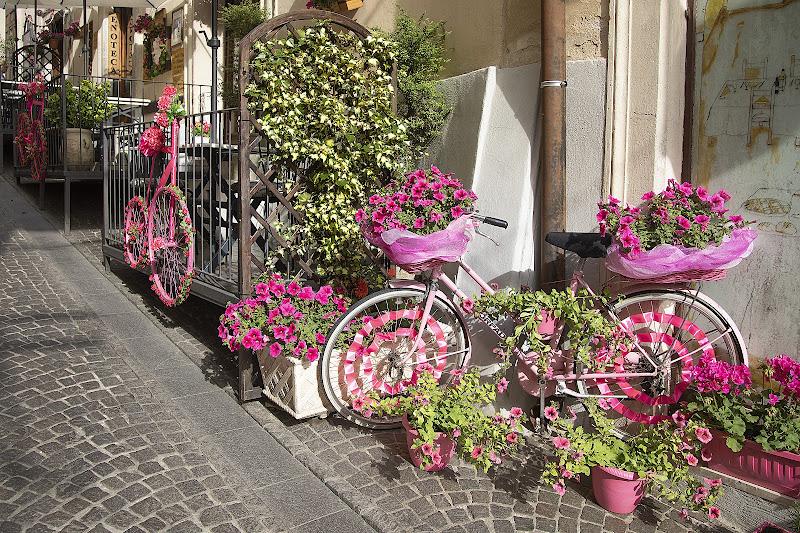 Aspettando il giro d'Italia di dome_pe
