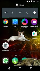 Zenka the cat widget screenshot 0