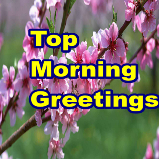 Top Morning Greetings