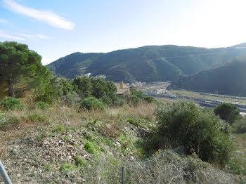 terrain à Cerbère (66)