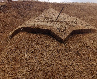 roof made of hay outside