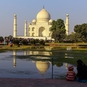 Symbol by Arun Karanth - Buildings & Architecture Statues & Monuments ( history, reflection, symbol, taj mahal, trees, monument, india, uttar pradesh, morning, people )