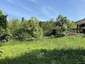 terrain à batir à Vignieu (38)