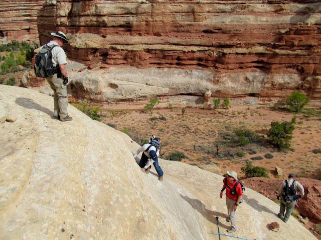 Descending more moqui steps