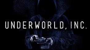 Underworld, Inc. thumbnail
