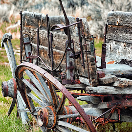 Worn Out Wagon by Twin Wranglers Baker - Transportation Other ( bannack, montana, wagon, old wagon, antique,  )