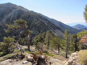 Photo: 2:47 - View south toward the Dawson/Baldy saddle. This is as far as we went before heading back.