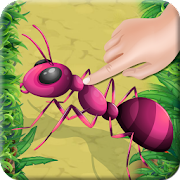 Ant Insect Smasher