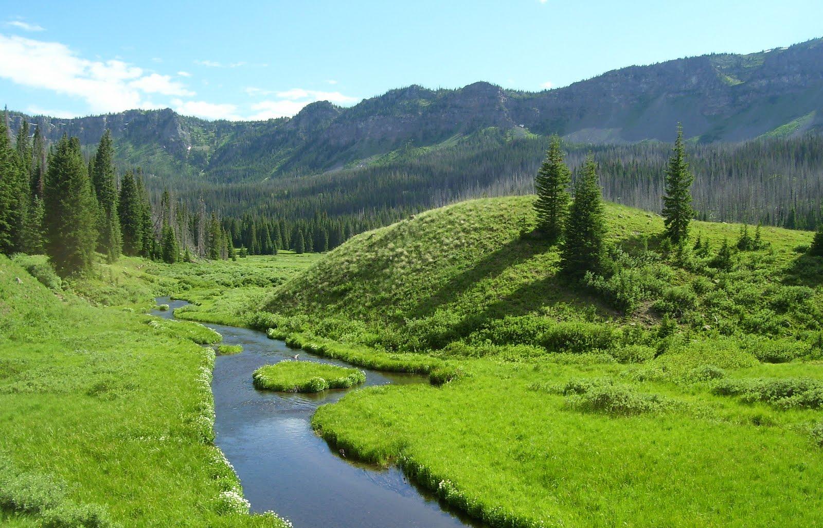 Photo: Flat Tops wilderness area.