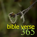 365 Bible Verse icon