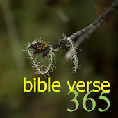 365 Bible Verse