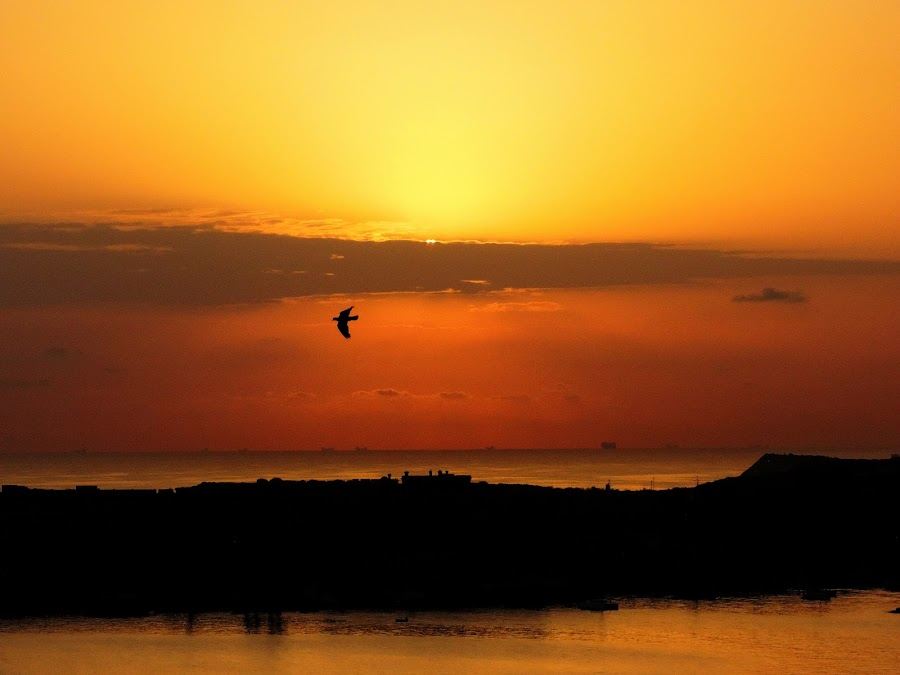 by Carmelo Mallia - Landscapes Sunsets & Sunrises (  )