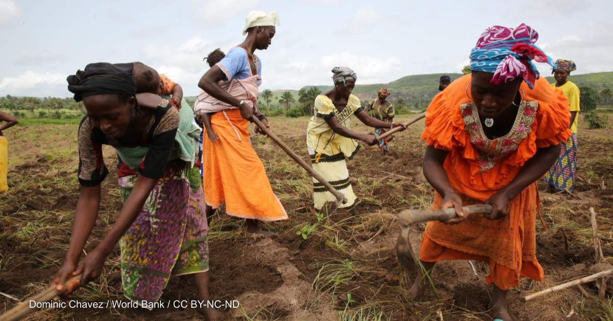 Q&A: How a gender focus could spark dietary change in Africa