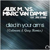 Died in Your Arms (Calmani & Grey Remix Edit) (feat. Jorg Schmid)