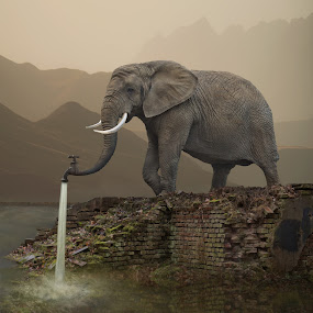 Hydrant by Dariusz Klimczak - Digital Art Animals ( colour, water, fantasy, mountains, klimczak, elephant, mood, ruins, square, surreal, kwadrart )