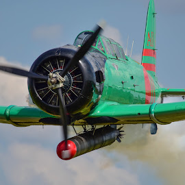 Close Up by Greg Harrison - Transportation Airplanes ( japanese aircraft, wwii, torpedo bomber, kate, pearl harbor )
