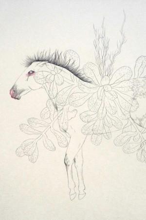Delphine Vaute_le cheval