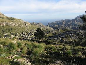 Photo: Vista sobre el Torrent de Mortitx