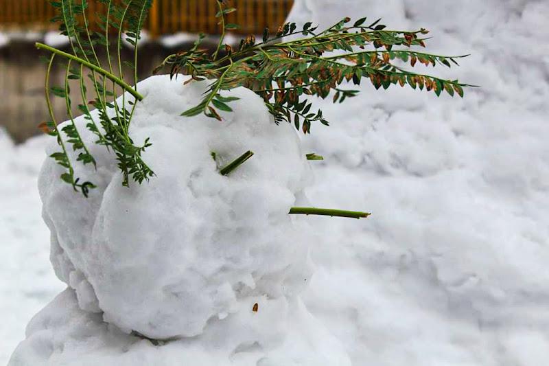 Pupazzo di neve di GiusyWendy