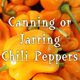 Canning Chili Peppers Vinegar Recipes