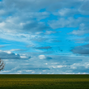 painting spring by Ira Mdt - Landscapes Prairies, Meadows & Fields ( spring color green fields bluesky minimal,  )