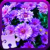 Fleurs Jeu de Puzzle