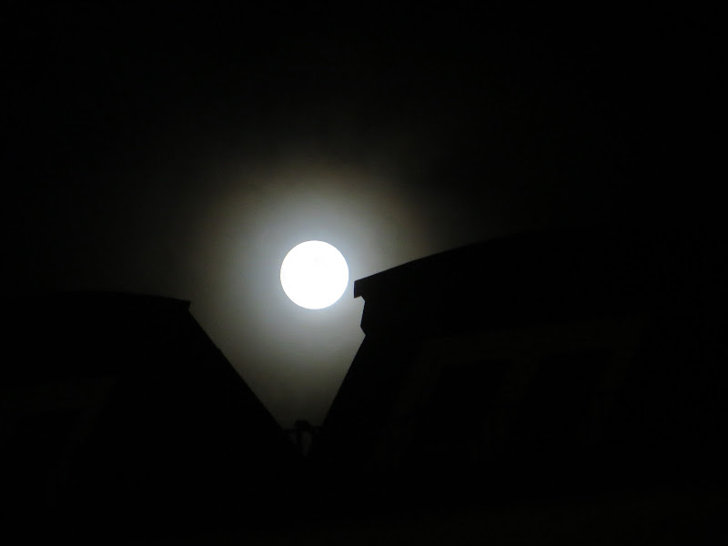 luna misteriosa di mariellaturlon