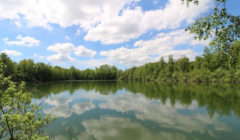 Terrain Milly-la-Forêt