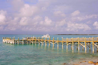 Photo: #006-Le ponton du scuba diving