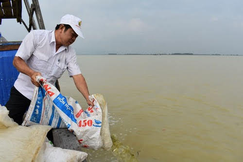 Hồ Dầu Tiếng, tăng cường nguồn lợi thủy sản