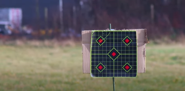 the 10 metre target