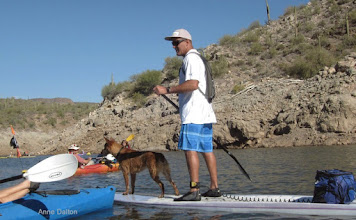 Photo: A stand-up paddler with canine companion.