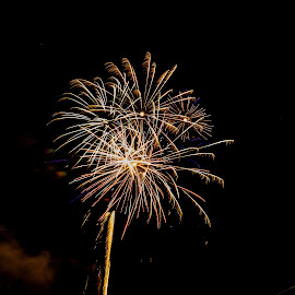 by Joe Permenter - Public Holidays July 4th ( holiday, outdoors, fireworks, 4th of july, independance day )