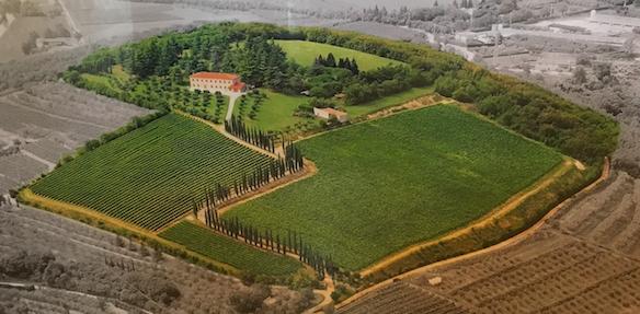 Het verhaal van Benedetti Valpolicella en Amarone