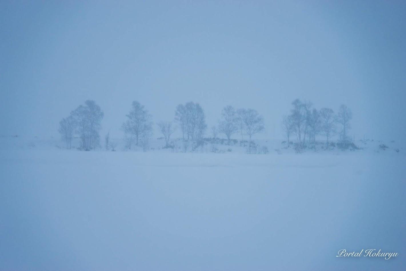 雪にけぶる北竜町