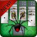 Card Games: Spider Solitaire Icon