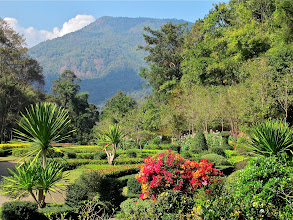 Photo: at the Queen Sirikit Botanical Garden in the Mae Sa hills of Chiang Mai