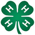 Valley Shamrocks icon