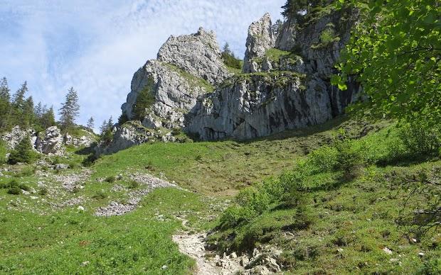 Wanderpfad Aufstieg Besler von Schönbergalpe Obermaiselstein Allgäu