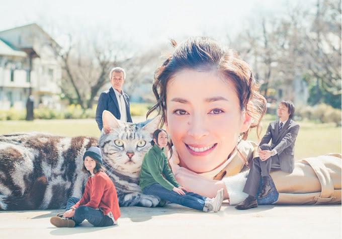 (TV-Dorama)(720p) 前田敦子 – グーグーだって猫である2 ep03 160625