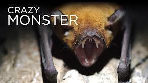 Crazy Monster thumbnail