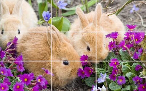 Puzzle - Cute bunnies screenshots 1