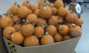 Photo: I think this weekend we might get some baby pumpkins and paint pens. I love these cuties!
