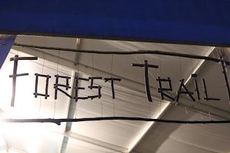 Photo: Et c'est parti pour le Forest 2013